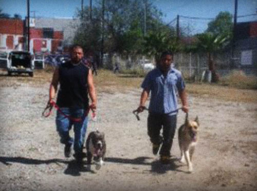 2 men who planned to surrender their dogs to the South LA Shelter opt for free training class instead.